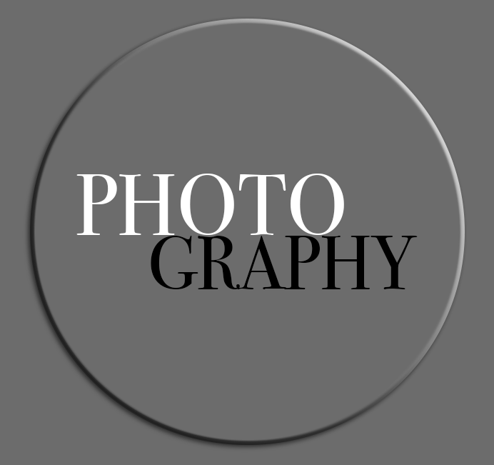 3D Logo for Janice D Nelson Photography